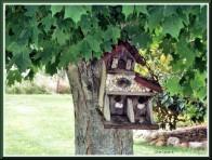 Nesting Condo