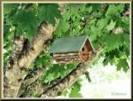 Nesting House