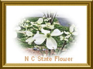 Dogwood  NC State Flower